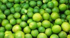 المستهلك ترجح ارتفاع اسعار الليمون الى ممارسات احتكارية