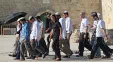 آلاف المستوطنين يقتحمون الحرم الإبراهيمي