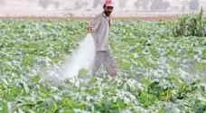 وزارة الزراعة تدعو لأخذ الاحتياطات اللازمة .. تفاصيل