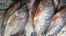 أنواع من الأسماك لا ينصح الأطباء بتناولها