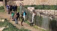 مستوطنون متطرفون يقتحمون 'برك سليمان' جنوب بيت لحم