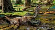 العثور على 'أتعس' الديناصورات حظا