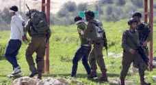 الاحتلال يعتقل 17 فلسطينيًا
