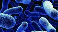 منظمة الصحة: 12 عائلة بكتيرية تمثل أكبر تهديد للبشر