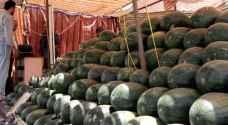 أمانة عمّان تتوعد بإزالة معرشات البطيخ المخالفة