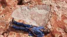 العثور على أكبر أثر لقدم ديناصور في العالم