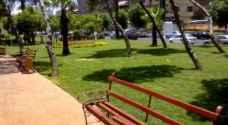 'الأمانة' تعلن جاهزية حدائقها ومتنزهاتها لفصلي الربيع والصيف