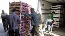 'المزارعون' يحملون الحكومة مسؤولية توقف الإمارات عن الاستيراد