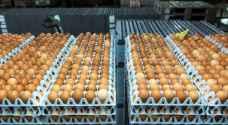 البيض الملوث يصل إلى آسيا