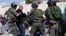 الاحتلال يعتقل ١٧ فلسطينيا