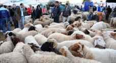 طقس العرب: الأجواء أيام عيد الأضحى اعتيادية ولا موجة حارة