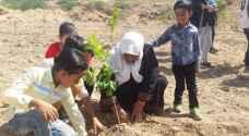 فيديو .. زراعة ٥٠٠ شجرة في الأغوار الوسطى بدعم من دهانات ناشونال