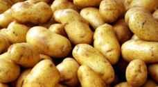 الاردن يرفض دخول شحنة البطاطا اللبنانية الى الاسواق