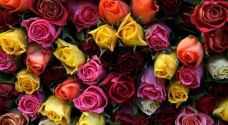 طرح عطاء لإنشاء بورصة أزهار جديدة
