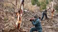 الزراعة تدعو لتشديد عقوبات المعتدين على الاراضي الحرجية