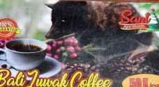 ثمن الفنجان الواحد ٥٠ دولارا .. تعرف على اغلى قهوة في العالم - صور
