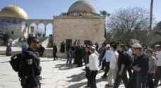 ٢٠٨ مستوطنين يقتحمون الأقصى بعيد 'الحانوكاه'