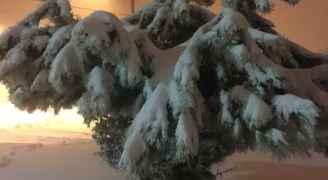 تراكم الثلوج في الرشادية