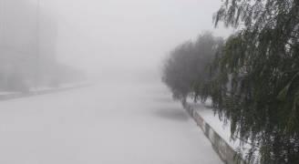 بالفيديو والصور .. الثلوج تغطي أجزاءً واسعة من لواء البترا والشوبك