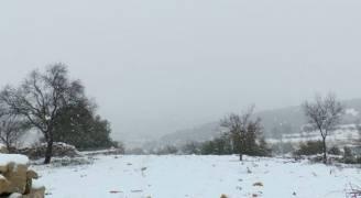شاهد بالفيديو والصور: تساقط كثيف للثلوج في جرش