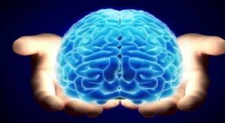 علماء: ليس للعقل حدود سوى التي نفرضها عليه