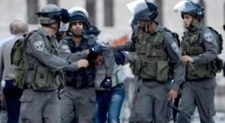 الاحتلال يعتقل 12 فلسطينيا