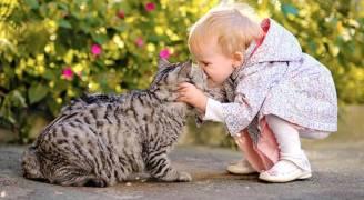 أبحاث: التعامل مع الحيوانات الأليفة يقلل من الحساسية والبدانة!