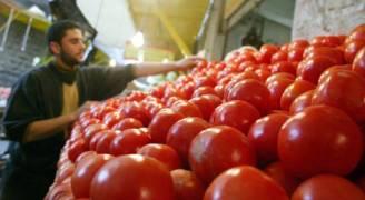 الزراعة للمواطنين :'أسعار الخضار لن ترتفع في رمضان'