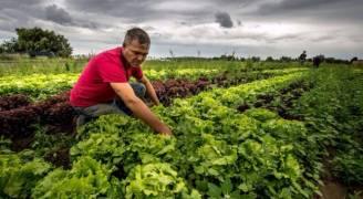 الكشف عن موعد وقف تصدير المنتجات الزراعية الأردنية إلى الإمارات