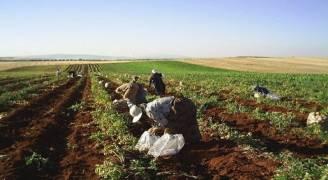 تأمين صحي للمزارعين