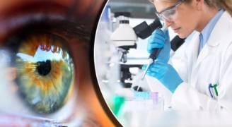 اكتشاف عقار جديد يمنع الإصابة بالعمى لدى مرضى السكري