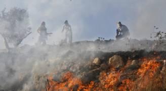 مستوطنون يحرقون أراضي مزروعة جنوب نابلس