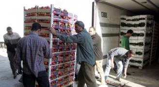 السماح للبرادات الاجنبية بتحميل المنتجات الزراعية لفترة محدودة