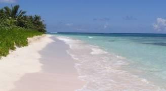 نزهة افتراضية على الشاطئ تخفف الألم أثناء علاج الأسنان