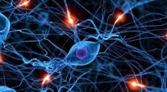 فيتامين يقتل الخلايا الجذعية للسرطان