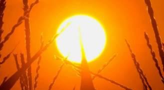 أجواء حارة نسبياً إلى حارة السبت والاحد .. وحارة في العديد من المناطق الإثنين والثلاثاء