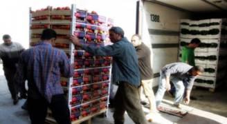 ٨٥ الف طن صادرات الخضار والفواكه بتموز الماضي