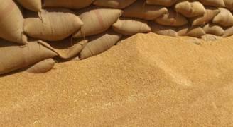 البحرين تطرح مناقصة لشراء ٢٥ ألف طن من القمح