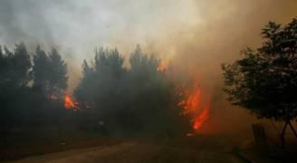 حريق غابات قرب أثينا يدفع السكان للفرار