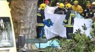١٣ قتيلا في سقوط شجرة معمّرة على مصلين في البرتغال
