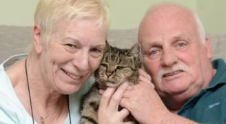 تعرف على أقدم قط بالعالم عمره ٣٢ عاماً !