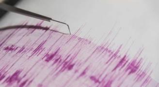 زلزال بقوة ٧,١ درجات يضرب العاصمة المكسيكية
