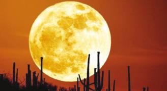 'قمر الحصادين' يضيئ سماء المملكة الخميس