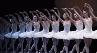 راقصات روسيات سيتوجهن للسعودية!.. والمملكة توافق عقب زيارة الملك سلمان لبوتين