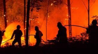 ارتفاع حصيلة الحرائق في البرتغال وإسبانيا الى ٤٥ قتيلا