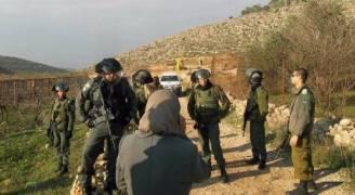 اصابة فلسطينيين باعتداء لمتطرفين على مزارعهم في نابلس