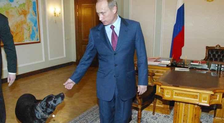 رفضت موسكو عرض طوكيو لإهداء بوتن كلبا