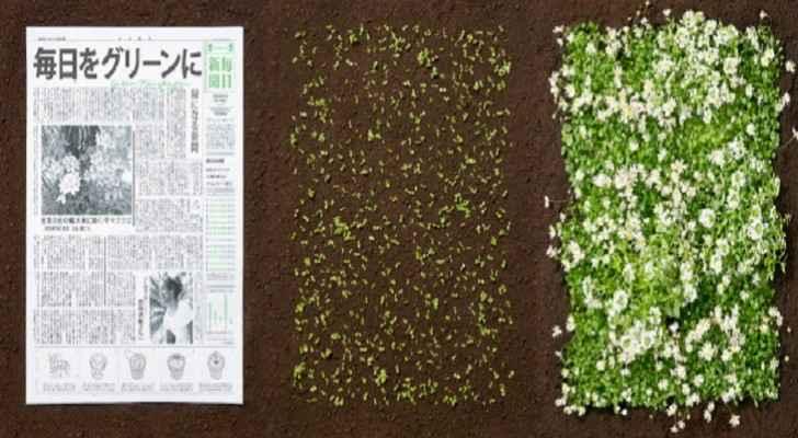 """صحيفة """"خضراء"""" يمكن زرعها وتحويلها إلى أزهار"""