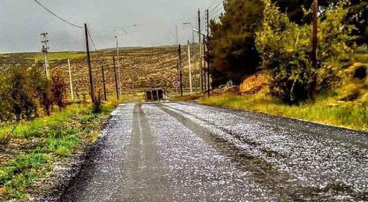 صورة من الأمطار في الشوبك