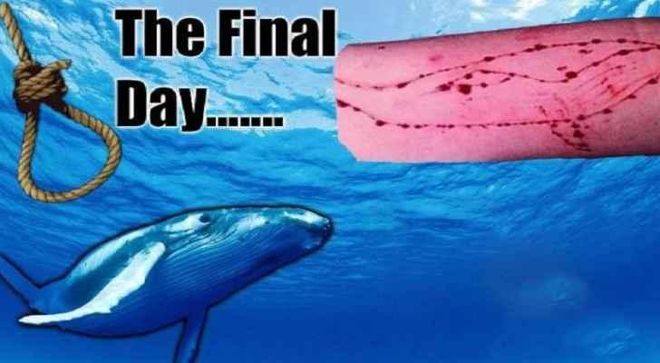 رؤيا الإخباري   وزير الاتصالات العمل جار على حجب لعبة الحوت الأزرق